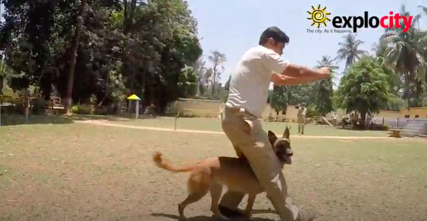 The Bangalore Police Dog Squad